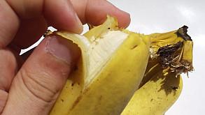 banana_descascando